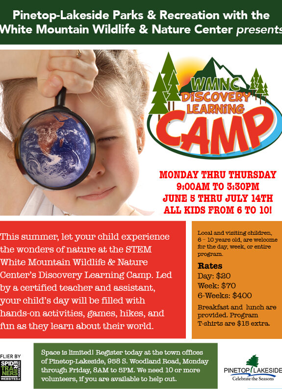 Discovery Learning Camp flier